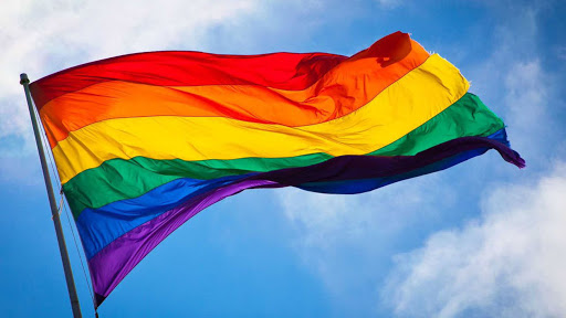 Matrimonio igualitario; la historia resumida