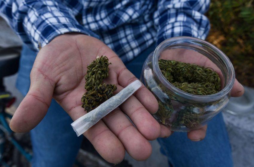 ¿Un porrito o qué? Estatus jurídico en México sobre el consumo de Marihuana