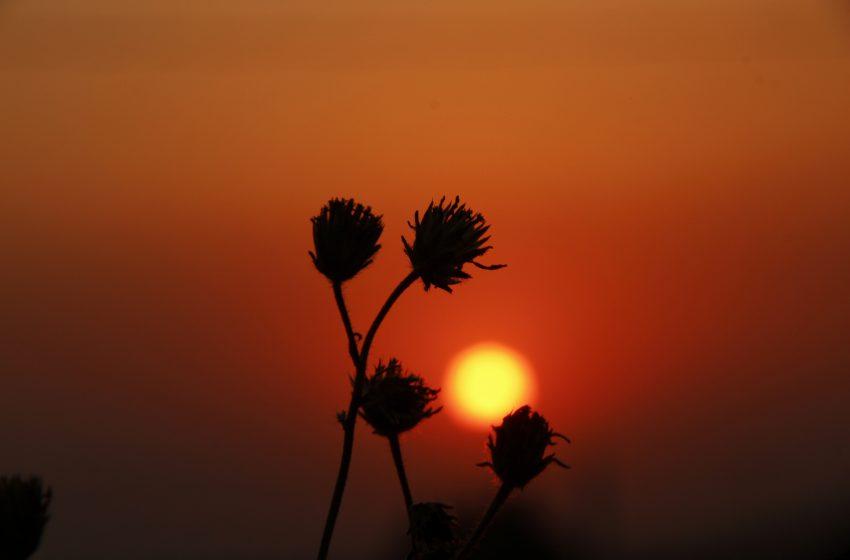 Aproximaciones al sol: una danza entre el cielo y la tierra