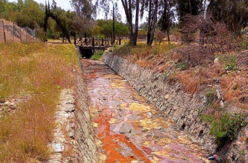 Tras contaminación por desechos, inician rehabilitación del lago en Parque de la Amistad