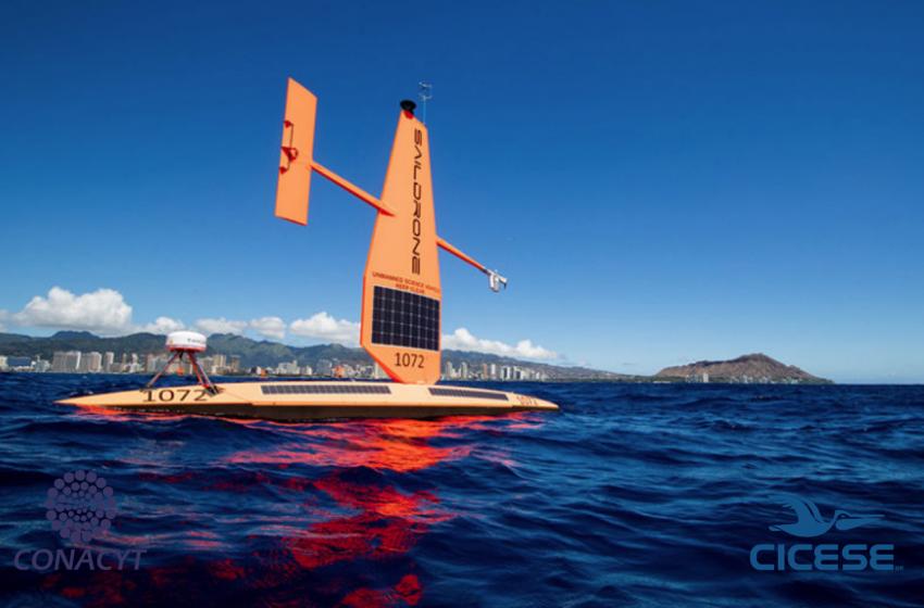 En colaboración NASA Y CICESE utilizan saildrones para estudiar Océano Ártico