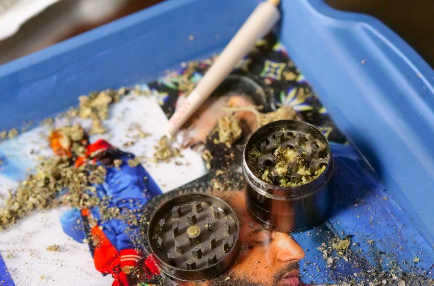 Es oficial: prohibir el consumo lúdico de cannabis en México es inconstitucional